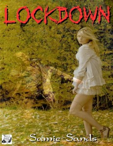 Lockdown ebook cvr (1)